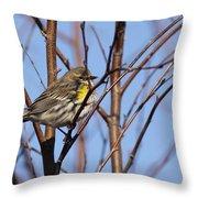 Yellow-rumped Warbler - Placid Throw Pillow