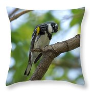 Yellow Rumped Warbler Looking Down Throw Pillow