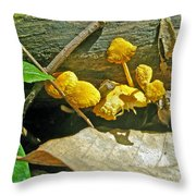 Yellow Sandpaper Mushrooms Throw Pillow