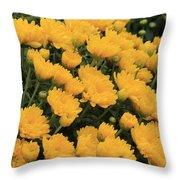Yellow Sea Of Flowers Throw Pillow