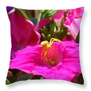 Yellow Spider In The Sun Throw Pillow