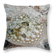 Yellow Stingray In Caribbean Sea Throw Pillow