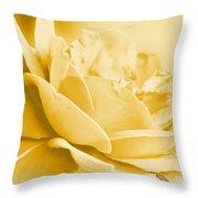 Yellow Tone Rose  Throw Pillow