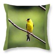 Yellow Tux Throw Pillow