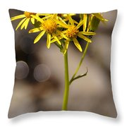 Yellow Wildflower At Crater Lake Throw Pillow