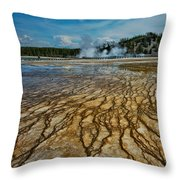 Yellowstone Blood Vessels Throw Pillow by Dan Mihai