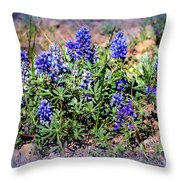 Yellowstone Lupine Blue Throw Pillow