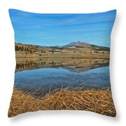 Yellowstone Reflections 9437 Throw Pillow