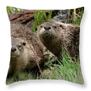 Yellowstone River Otters Throw Pillow