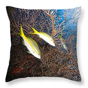 Yellowtail Snappers And Sea Fan, Belize Throw Pillow