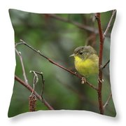Yellowthroated Warbler Throw Pillow