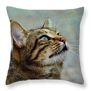 Yes I Am A Pretty Kitty Throw Pillow