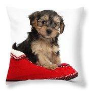 Yorkipoo Pup Throw Pillow