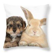 Yorkipoo Pup With Sandy Rabbit Throw Pillow
