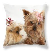 Yorkshire Terrier And Guinea Pig Throw Pillow