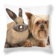 Yorkshire Terrier And Young Rabbit Throw Pillow