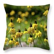 Yosemite Coneflowers Throw Pillow