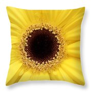 You Are My Sun Throw Pillow