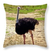 You Look At Me I Look At You Throw Pillow