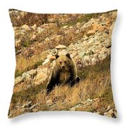 You Want My Photo? Throw Pillow