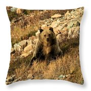 You Whistling At Me? Throw Pillow