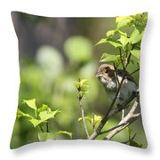 Young Blue Grosbeak Throw Pillow