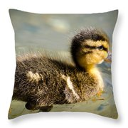 Young Duck Throw Pillow