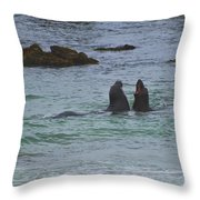 Young Elephant Seals Sparring Throw Pillow