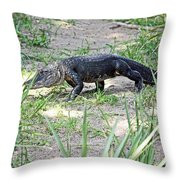 Young Gator On The Move Throw Pillow
