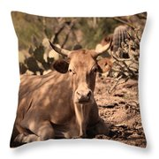 Young Longhorn Steer Throw Pillow