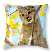 Young Lynx In A Tree Throw Pillow