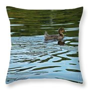 Young Male Garganey Throw Pillow
