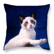 Young Mixed Breed Grooms Throw Pillow