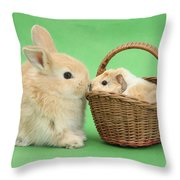 Young Rabbit With Baby Guinea Pig Throw Pillow