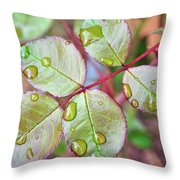 Young Rose Leaves Throw Pillow
