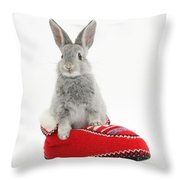 Young Silver Rabbit In A Knitted Slipper Throw Pillow