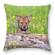 Young Wolf Cub Peering Over Log Throw Pillow