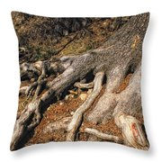 Your Roots Are Showing Throw Pillow