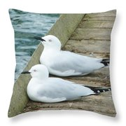Your Turn To Test The Water Throw Pillow