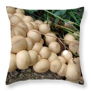 You're Crowding Me Throw Pillow