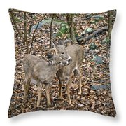You're The Best Brother Ever Throw Pillow
