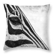You've Got Zebra Eyes Throw Pillow