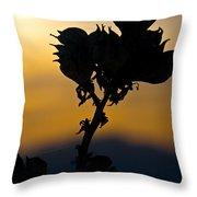 Yucca At Sunset Throw Pillow