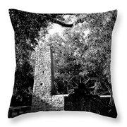 Yulee Sugarmill 2  Black And White Throw Pillow
