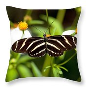 Zebra Longwing And Flowers Throw Pillow