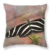 Zebra Longwing Butterfly-3 Throw Pillow