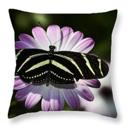 Zebra Longwings Throw Pillow