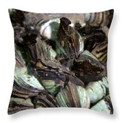 Zebra Mussels Dreissena Polymorpha Throw Pillow