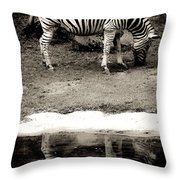 Zebra Reflection  Throw Pillow