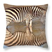 Zebra Times Two Throw Pillow